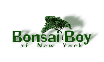 Discount Coupon in Bonsai Boy of New York